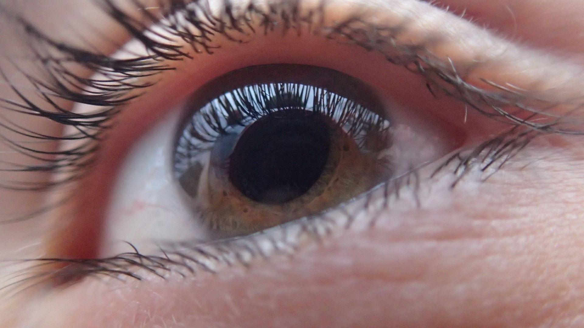 barna szem makro.jpg